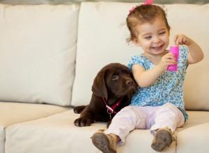 Ποιοι σκύλοι είναι οι ιδανικοί για οικογένειες με μικρά παιδιά;
