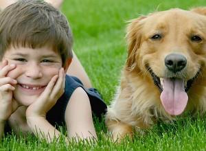 Παιδιά και σκύλοι: Ευθύνες σε κάθε ηλικία